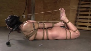 Mature hogtied in HD